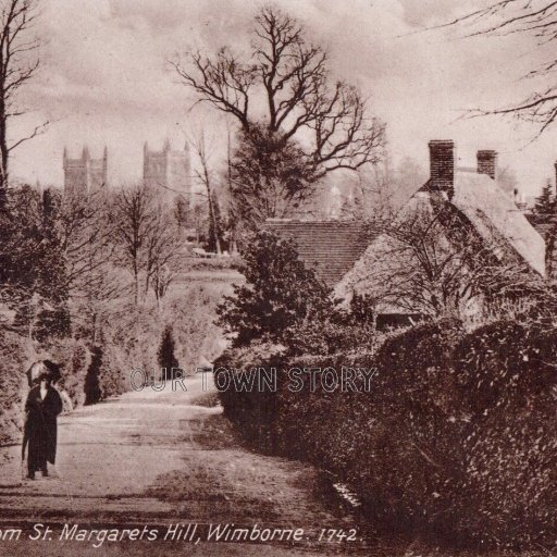 Wimborne from St Margaret's Hill, c. 1900