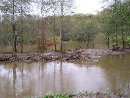duffryn-pond-neathabbey