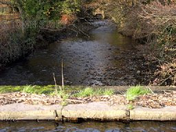 river clydach neath abbey