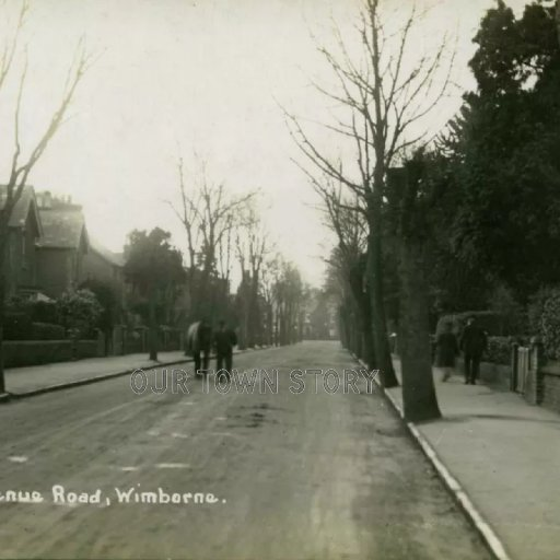 Avenue Road, Wimborne Minster, c. 1900s