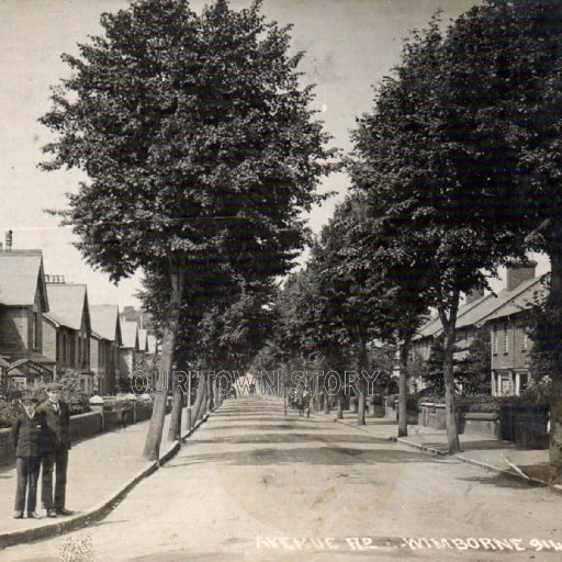 Avenue Road, Wimborne Minster, c. 1909