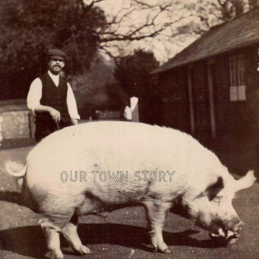 Farmer and Pig at White Farm, Moor Crichel, c. 1913
