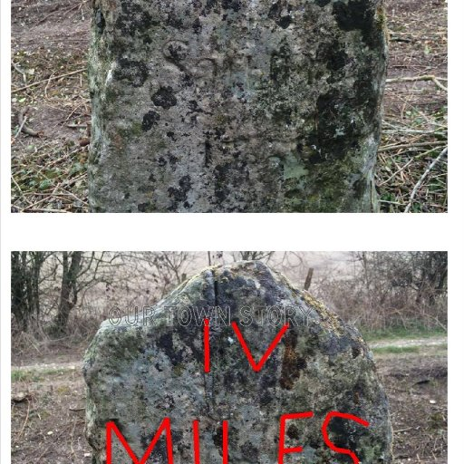 Mileage Stone, Grovely Woods, 1759