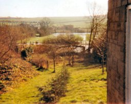 A view down the public footpath, Ugford, Late 1980's