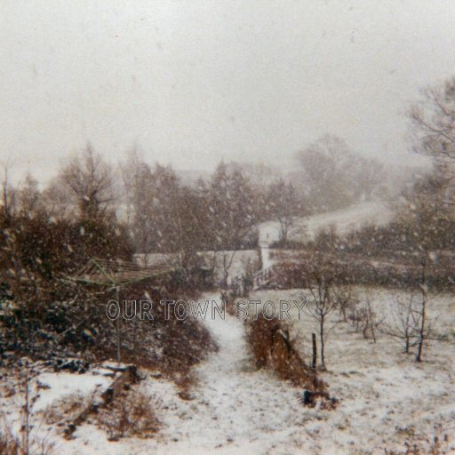 A view down the public Foot path, Ugford, early 1980's